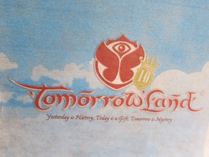 Brussels-Airlines-Tomorrowland-Flight-2014-03