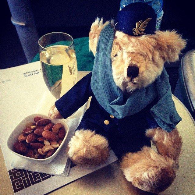 Gulf-Air-Bear
