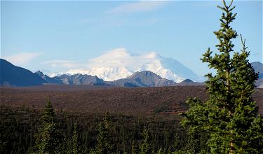Visit Denali National Park Like A Local During Road Lottery