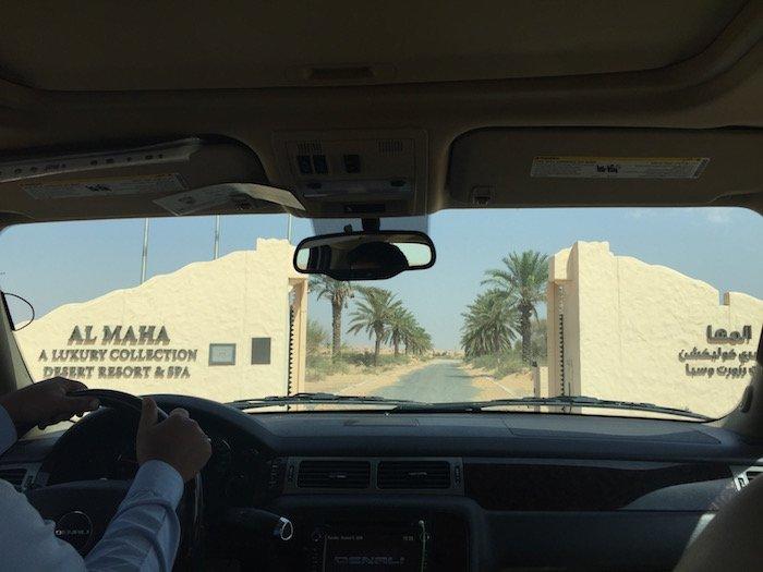 Al-Maha-Resort-Dubai-Rooms - 1