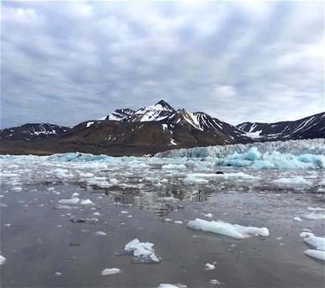 Introduction: An Arctic Summer
