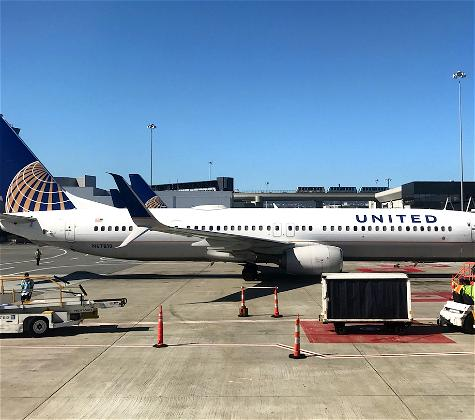 Heartbreaking: United Kills Another Dog (This Time In The Cabin)
