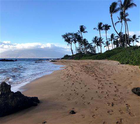 My Experience: How Hawaii's Pre-Travel Testing Program Works